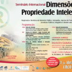 "Sean Flynn to Speak at Brazilian Seminar: ""Dimensions of Intellectual Property"""